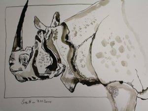 Nashorn - Zeichnung von Susanne Haun - 30 x 40 cm - Sepia auf Bütten