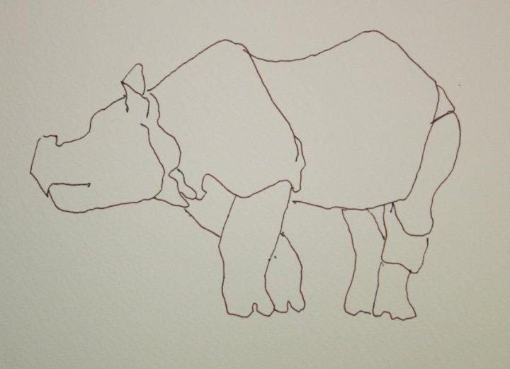 Bewegungs - Skizze Nashorn von Susanne Haun