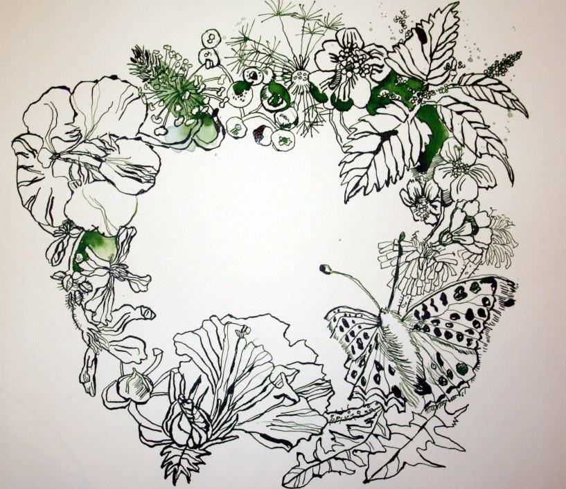 Kräuterkranz (c) Zeichnung von Susanne Haun