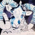 Widder Vers. Nr. 3 - Zeichnung von Susanne Haun - Tusche auf Bütten - 20 x 20 cm
