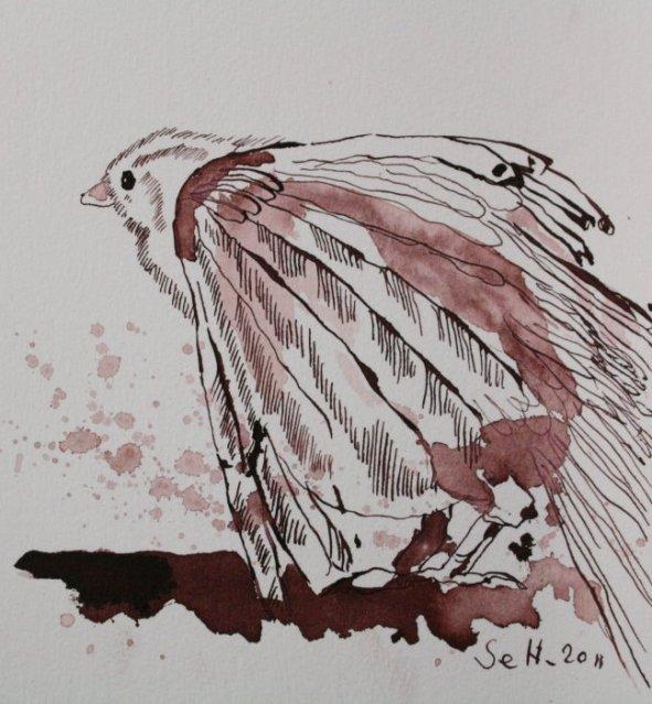 Der kleine Spatz - Zeichnung von Susanne Haun - Tusche auf Bütten - 10 x 10 cm