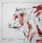 Kuh auf der Weide - Zeichnung von Susanne Haun - Tusche auf Bütten - 25 x 25 cm