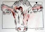 Allgäuer Kuh - Zeichnung von Susanne Haun - Tusche auf Bütten - 17 x 22 cm