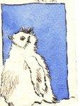 Pinguin blau Nr. 2 - Zeichnung von Susanne Haun - Tusche auf Bütten - 11 x 7,5