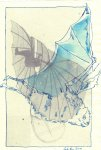 Fledermaus 3 - Überzeichnung von Susanne Haun - Tusche auf Bütten 30 x 20 cm