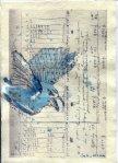 Zaunkönig 3 - ÜberZeichnung von Susanne Haun - 30 x 20 cm - Tusche auf Bütten