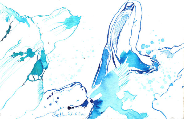 Blauregen, 17 x 13 cm, Tusche auf Bütten (c) Zeichnung von Susanne Haun (5)