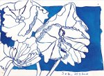 Blätter (c) Zeichnung von Susanne Haun (2)