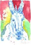 Kolorierter Esel Version 1 (c) Radierung von Susanne Haun