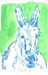 Kolorierter Esel Version 2 (c) Radierung von Susanne Haun
