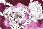 Pinkfarbende Blume (c) Zeichnung von Susanne Haun