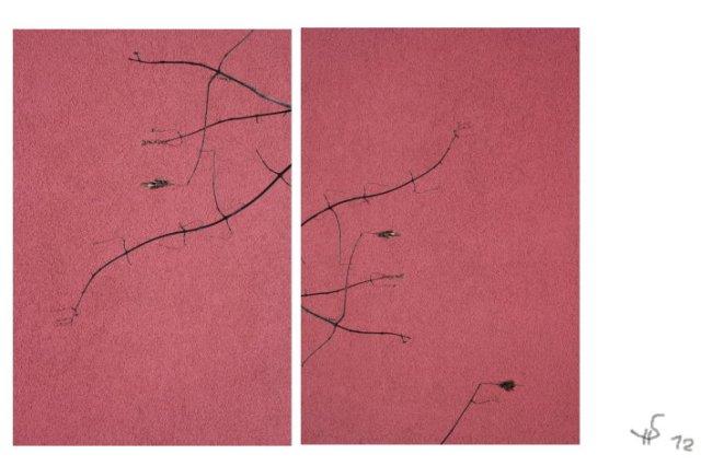 Gedanken I (c) Foto von Susanne Haun