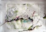 Muscheln mit Füller, Pit Artist Pen und Aquarell Grphit Stift (c) Susanne Haun