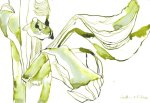 Löwenmäulchen verwelkte Blüten (c) Zeichnung von Susanne Haun