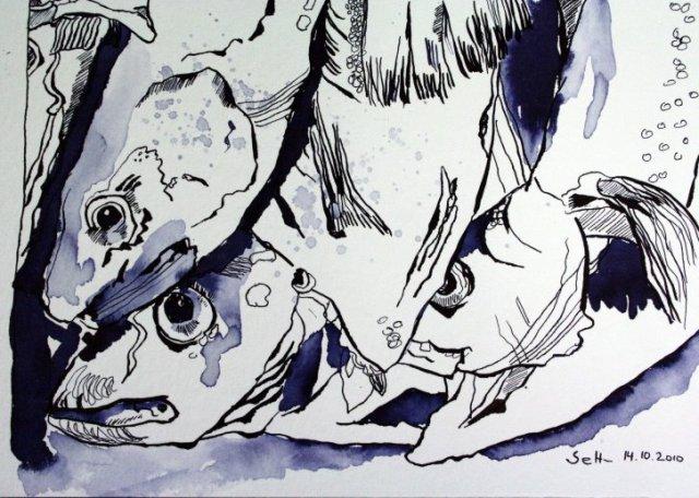 Fische 17 x 22 cm Tusche auf Bütten (c) Zeichnung von Susanne Haun