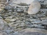 Steine im Montone (c) Foto von Susanne Haun