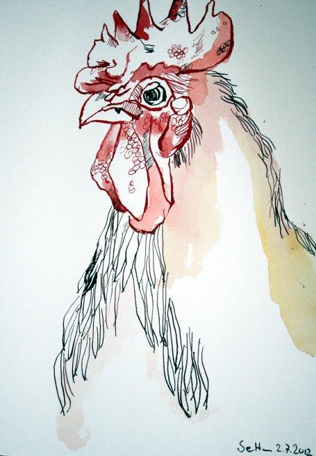 Hahn 17 x 22 cm Tusche auf Bütten (c) Zeichnung von Susanne Haun (2)