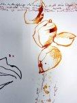 Detail 3 Samenfrüchten rieselt Wasser (c) Zeichnung von Susanne Haun
