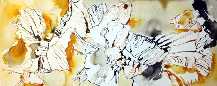 Hibiskus 20 x 50 cm Tusche auf Bütten (c) Zeichnung von Susanne Haun