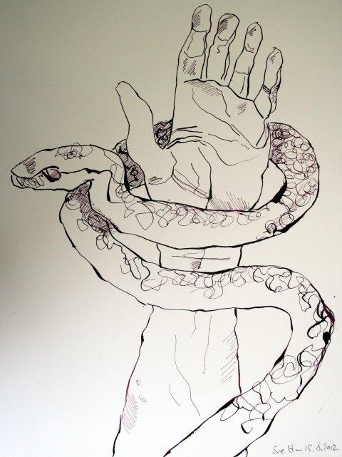 Schlangenträger Ophiuchus 24 x 32 cm Tusche auf Bütten (c) Zeichnung von Susanne Haun