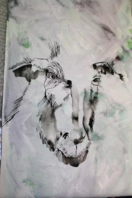Ziege auf Leinwand (c) Detail Zeichnung von Susanne Haun