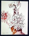 Zwei Dahlien 70 x 50 cm Tusche auf Bütten (c) Zeichnung von Susanne Haun