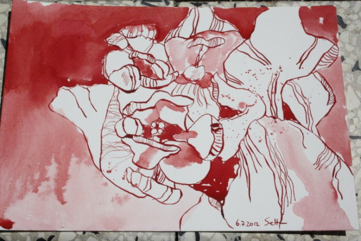 Rote Blume 17 x 22 cm Tusche auf Bütten (c) Zeichnung von Susanne Haun