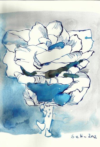 Rose blau Vers. 2 17 x 22 cm Tusche auf Bütten (c) Zeichnung von Susanne Haun