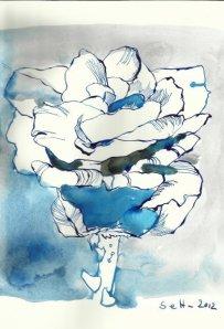 6 Rose blau Vers. 2 17 x 22 cm Tusche auf Bütten (c) Zeichnung von Susanne Haun