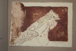 17 Den Sporn eines Kampfhahnes (c) Zeichnung von Susanne Haun
