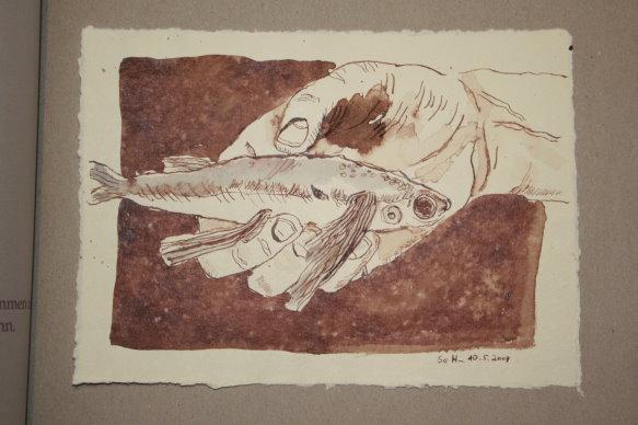 19 Iss doch den zweiten fliegenden Fisch (c) Zeichnung von Susanne Haun