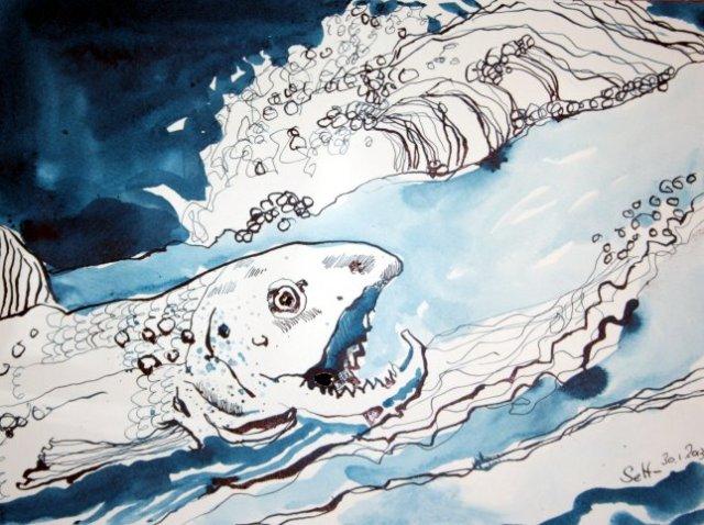 Im Fluss - 30 x 40 cm - Tusche auf Bütten (c) Zeichnung von Susanne Haun