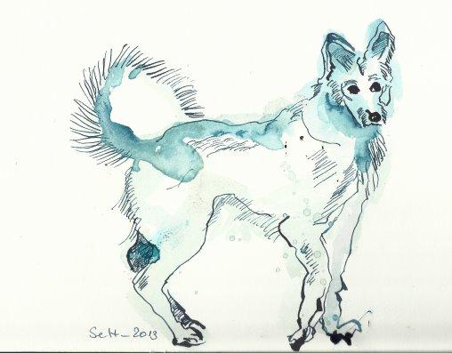 Ein Husky aus Berlin (c) Zeichnung von Susanne Haun