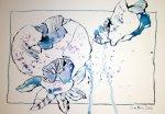 Pantoffelblumen Blatt 3 (c) Zeichnung von Susanne Haun