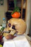 Stilleben mit Totenkopf (c) Foto von Susanne Haun