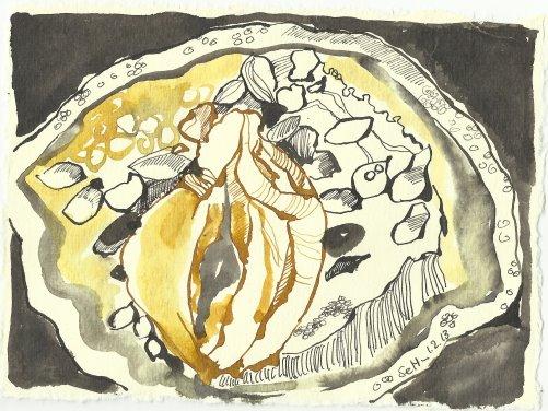 Blatt 77 Das Fruchtfleisch wölbt sich zu liebenden Lippen (c) Zeichnung von Susanne Haun