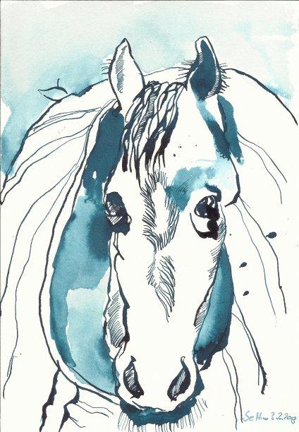 Pferd mit Decke (c) Zeichnung von Susanne Haun klein