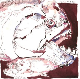 12 Fische (c) Zeichnung von Susanne Haun