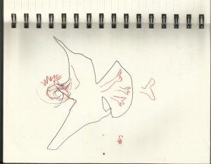 Studie zur Lilith im Flug (c) von Susanne Haun