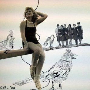 Blatt 24 Hühner auf der Stange (c) Collage von Susanne Haun