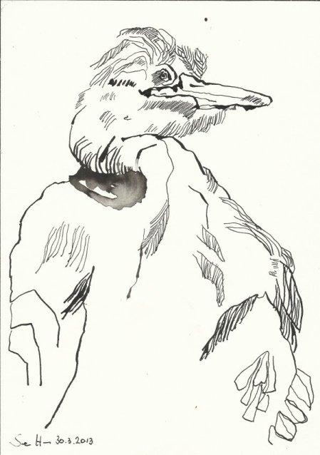 Der Reiher Tusche auf Bütten 22 x 17 cm (c) Zeichnung von Susanne Haun