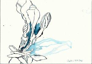 BBlaue Fresien Version 2 (c) Zeichnung von Susanne Haun