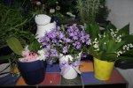 Vernissage Blumen (c) Foto von Susanne Haun