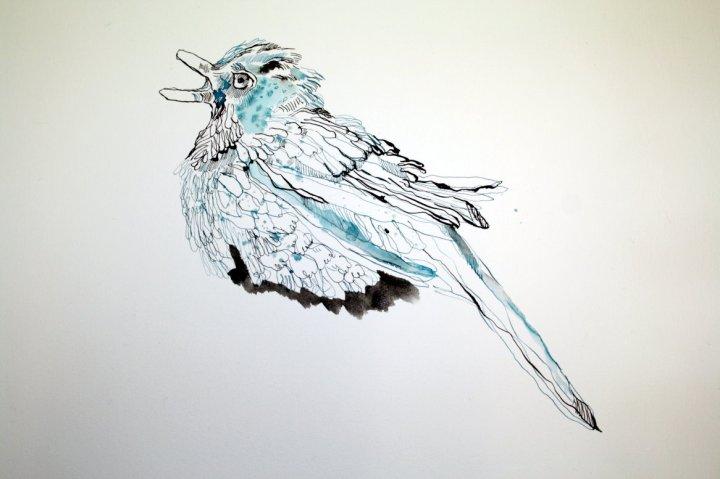 Schon etwas bissig (c) Zeichnung von Susanne Haun