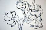 Entstehung Maiglöckchen (c) Zeichnung von Susanne Haun