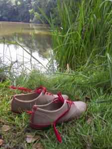 Amtsee vor dem Kloster Chorin (c) Foto von Susanne Haun