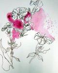 Entstehung Phlox (c) Zeichnung von Susanne Haun