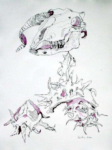 Der Erde preis gegeben - 65 x 50 cm - Tusche auf Bütten (c) Zeichnung von Susanne Haun