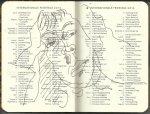 Selbstportrait Tagebuch Feiertage Seite 4 (c) Zeichnung von Susanne