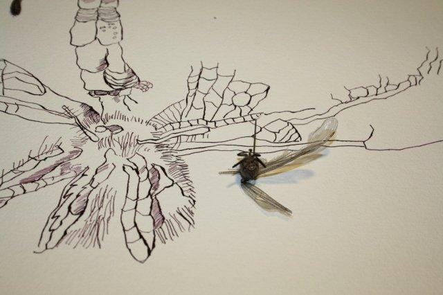 Ausschnitt Insektenturm (c) Zeichnung von Susanne Haun